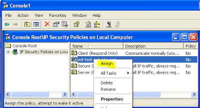 Configure a VPN tunnel between Linux and Windows XP