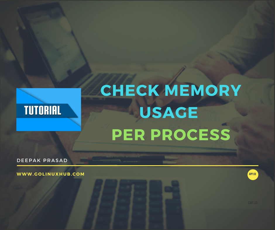 How to check memory usage of an individual process or application/program in Linux